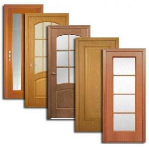Двери, дверные блоки Тужы